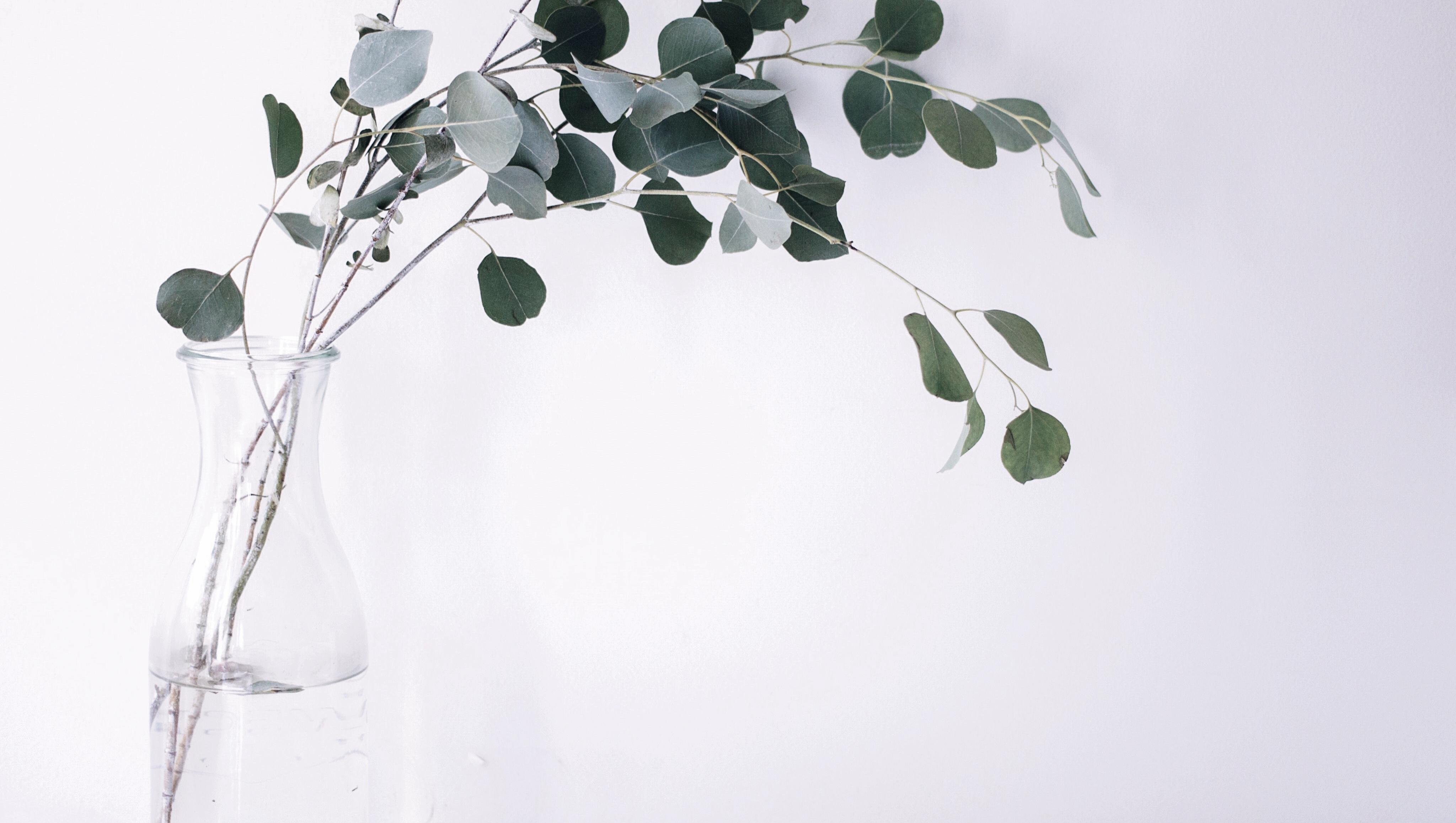 minimalismo-tempo-simplificar-the-minimal-magazine